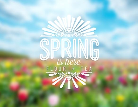 John - Spring Design